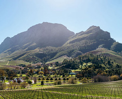 Accommodation-Banhoek-Lodge-View-on-Farms-495