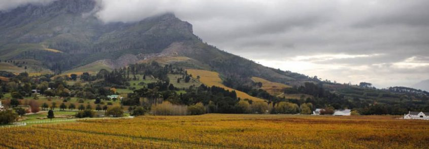 Winter-Weekend-Special-Banhoek-Lodge
